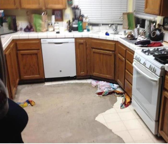 Mold Cleanup in Kitchen Before